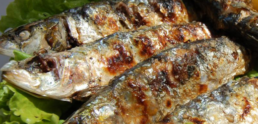 SARDINES – WHERE TO EAT, WHERE TO BUY, AND RECIPES